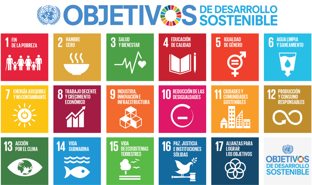 http://www.un.org/sustainabledevelopment/es/